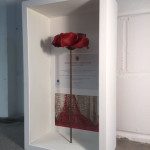 A poppy displayed in its entirety in a tall display frame...