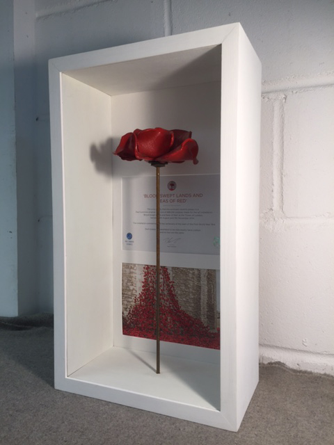 a poppy displayed in its entirety in a tall display frame - Display Frame